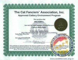CFA Cattery Kedi Yetiştirici Belgesi ALFA Kedi Irkları Koruma ve Denetleme Derneği