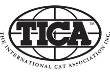 Tica Kedi Federasyonu Logo The International Cat Association