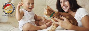 Kedilerde Yeni Deneyimler Evde Yeni Bir Bebek Alfa Kedi Irkları Koruma ve Denetleme Derneği